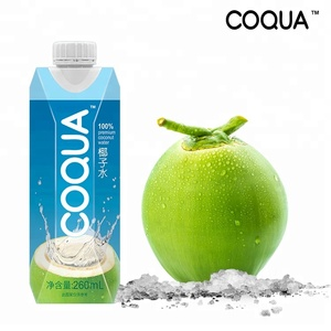 UHT 260ml in Aseptic box drink wholesale organic coconut water