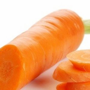 Fresh Organic Carrots Wholesale with best price