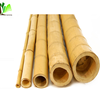 Large Dry Raw Moso Bamboo Poles for Sale