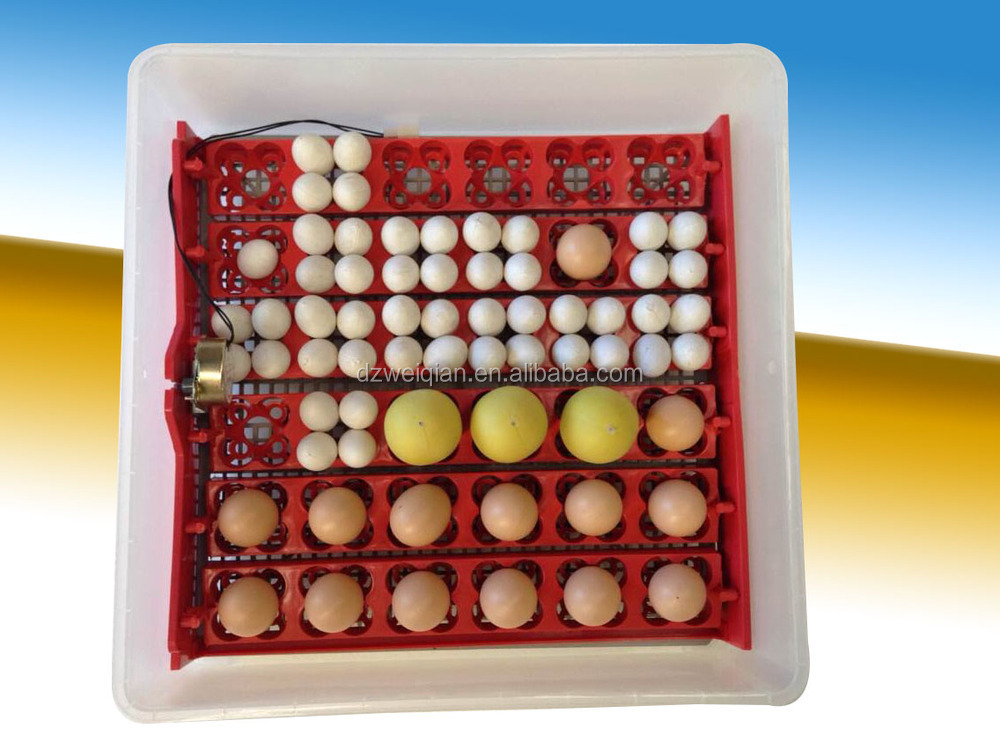 High Hatching Rate Automatic Quail Egg Incubator For Sale 288 ...