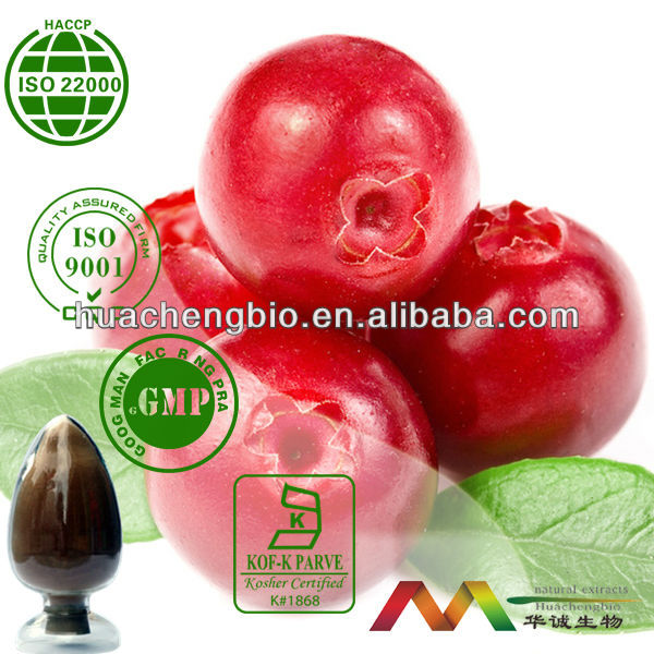 High Quality Natural Cranberry P.E. 1%-40% Proanthocyanidins, 1-36% Anthocyanidins