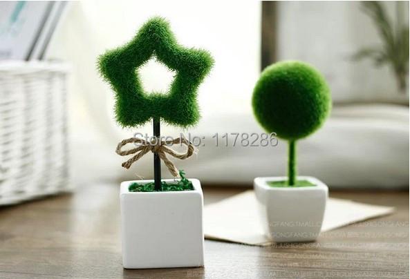 Contemporary Office Pot Plants Hawaiian And Ideas