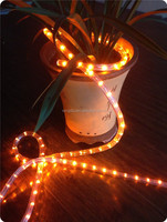 2wires steady orange 230v led rope light with CE, Rohs