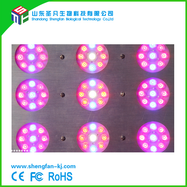 SF-ARR 200w cheap led grow light price list