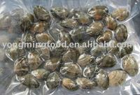 baby clam seafood to Japan