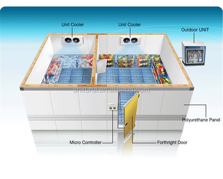 Cold Room Price For Frozen Fish Seafood Meat Blast Freezer