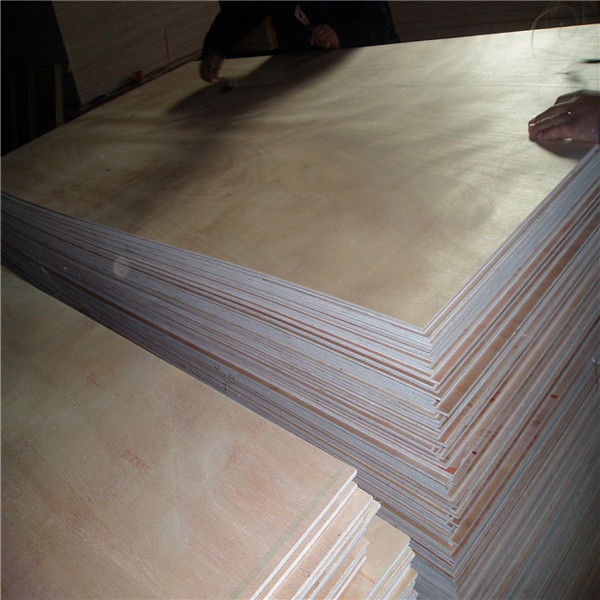 timbers and woods/ plywood manufacture Commercail Plywood with low price