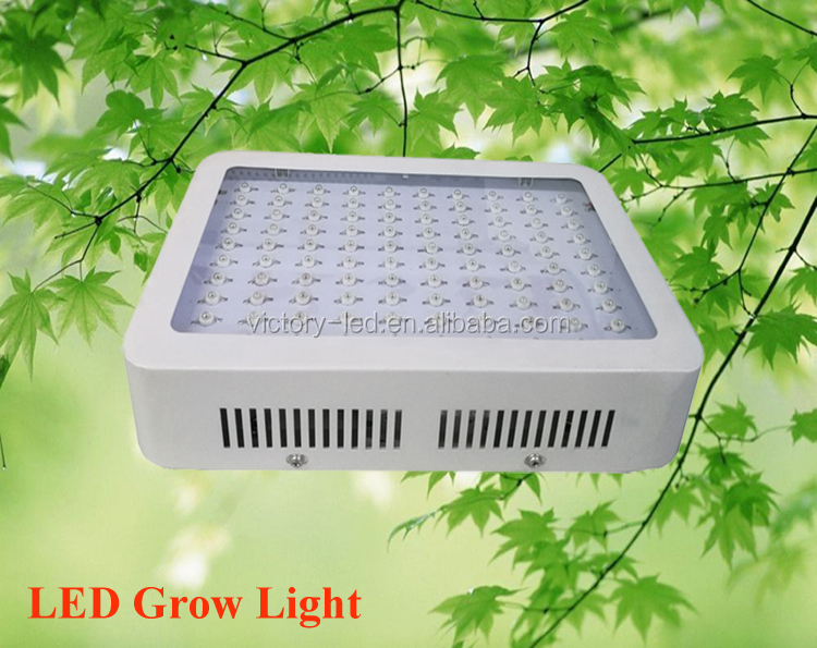 300W LED Plant Grow Light with Red Blue Spectrum for Growing&Flowering