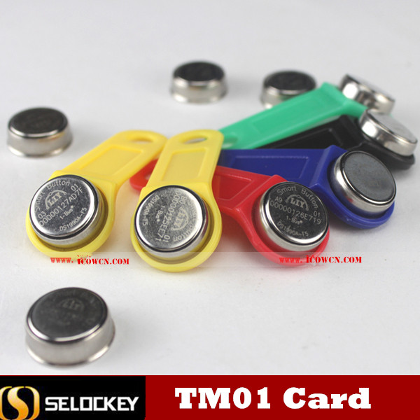 Self Development New Ibutton TM1/TM01C competitive with cyfral, metacom, ds card