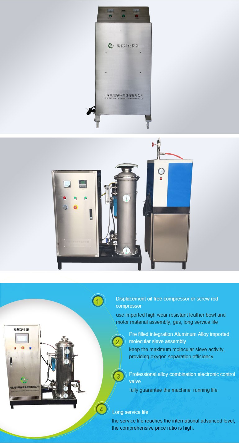 ozone generator for recirculating aquaculture system sterilization