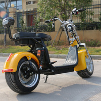 EEC coc removable battery seev adult 1000W 1500W 2000W 800W motor 2 wheel electric scooter adult ATV citycoco