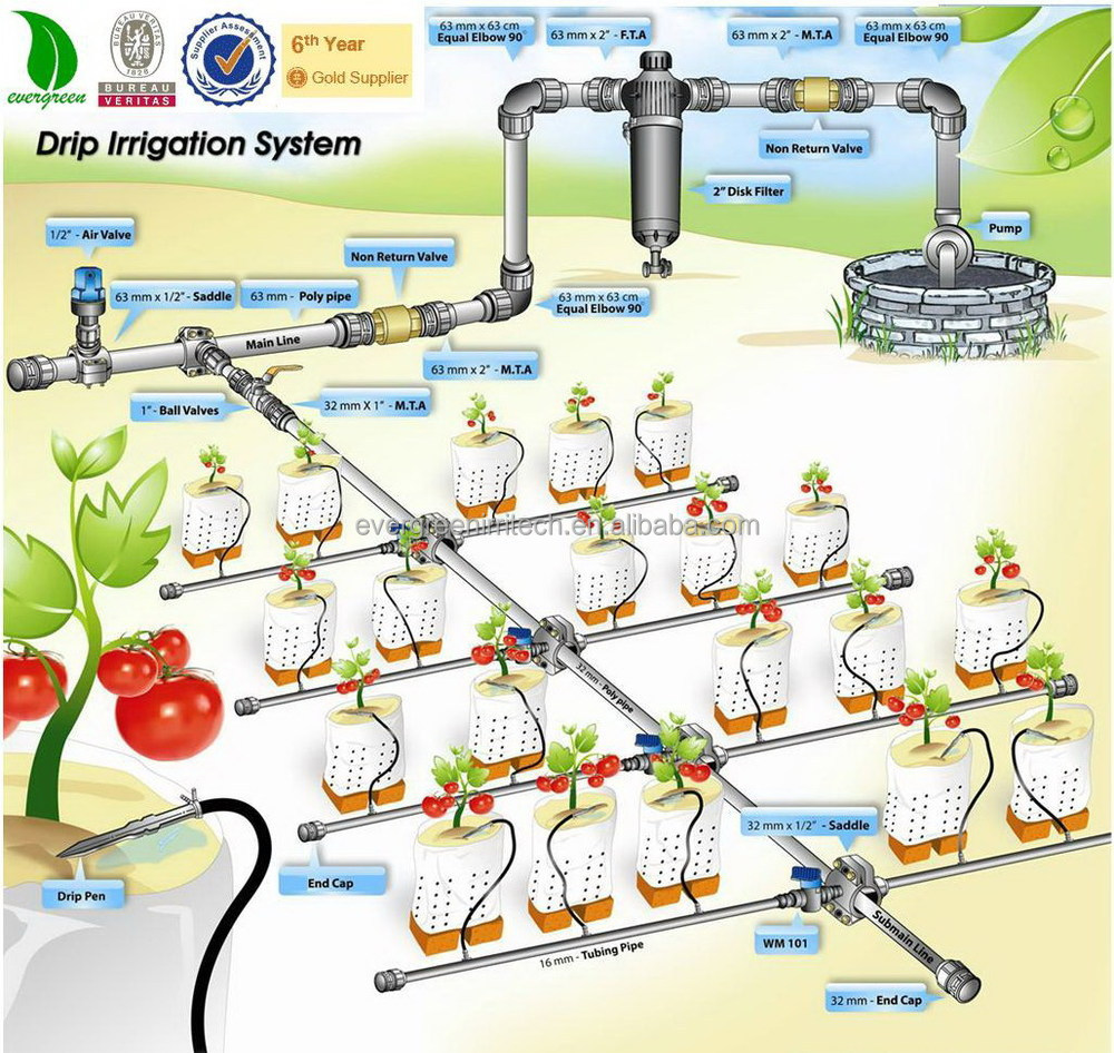 Greenhouse drip irrigation system plant watering