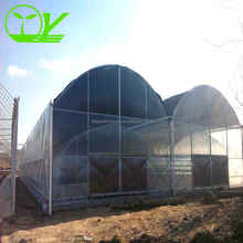 Commercial mushroom greenhouse for sale