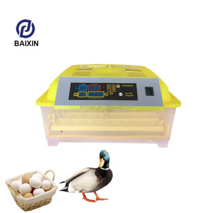 Durable Small 48 Full Automatic Controller Chicken Egg Incubation