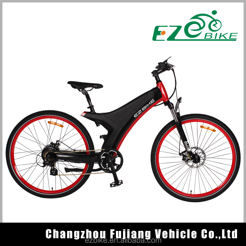 easy rider electric bike with battery (TDA11)