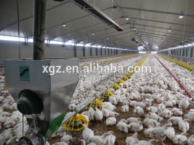 prefabricated steel structure chicken house farm shed design