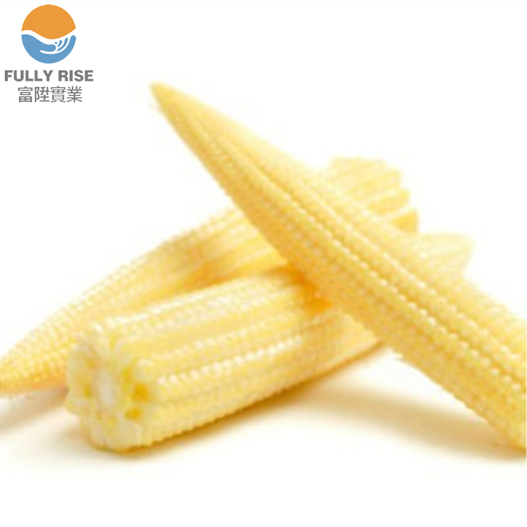 High Quality Canned Baby Corn cooked style in brine canned vegetable