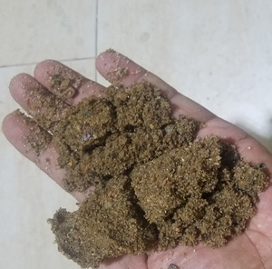 Nature River Sand From Timor-Leste