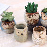 succulent plant mini owl shape ceramic flower pots