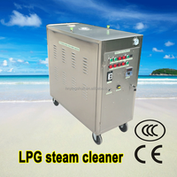 LPG steam type battery gas heating mobile steam jet auto upholstery cleaning machine