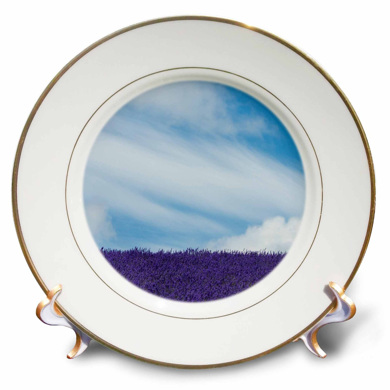 Danita Delimont - Clouds - Lavender farm, Furano, Hokkaido Prefecture, Japan - 8 inch Porcelain Plate (cp_225875_1)