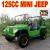 Rental Mini Jeep Willys 150cc
