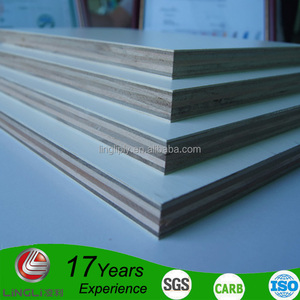 IS303 standard water resistant double-sided White laminated plywood