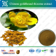Hot Selling Detoxification GMP factory herbal plant Berberine hydrochloride extract,Chinese Goldthread rhizome extract