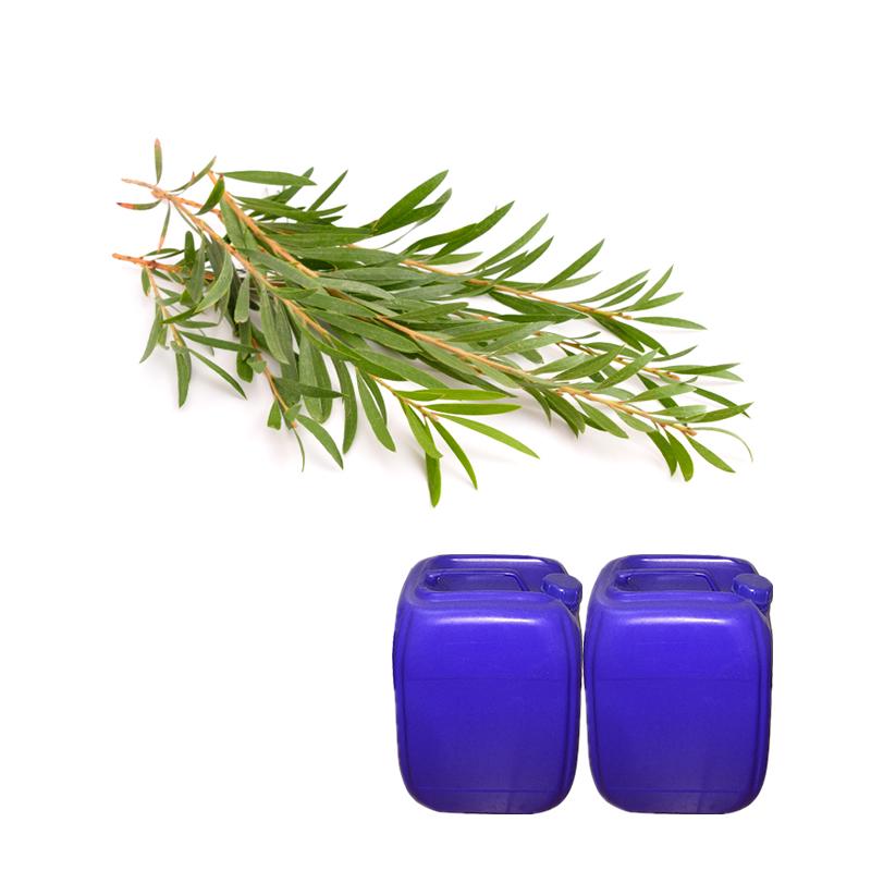 Scegliere Produttore alta qualità Olio Di Tea Tree Reazioni