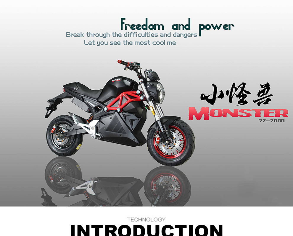 Monster 3000w Racing Motorcycle Electric Made in China