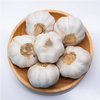 /product-detail/wholesale-fresh-white-peeled-solo-garlic-price-in-china-60477966061.html