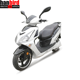 1500w Electrical Scooter Mobility Scooter for American market