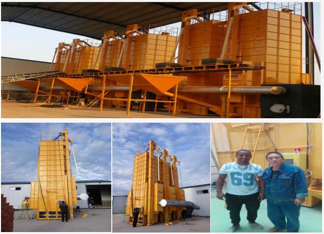 XinGuang low temperature mixed flow wind rice drying machine