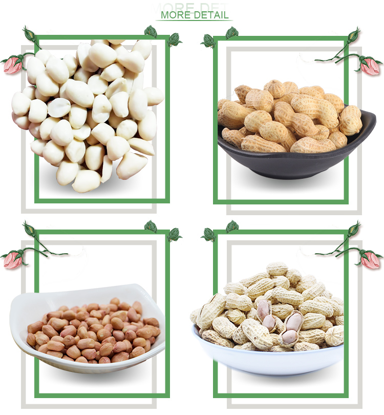 china origin wholesale roasted raw blanched peanuts 1kg price