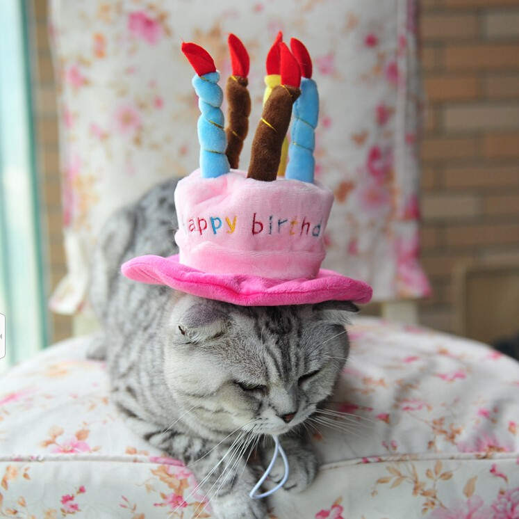 Happy birthday dog hats pet hats cat hats hot sale dog pet hat