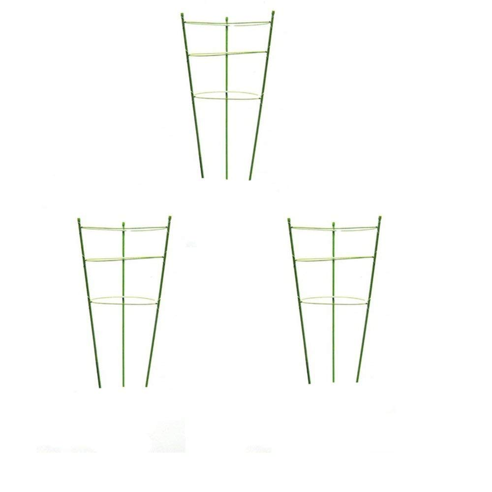 Plant Support Ring Garden Trellis Flower Iron Support Climbing Plant Grow Cage  Green, Set of 3 (3pack-30'')
