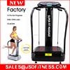 2000W CE Whole Body Vibration Machine Crazy Fit Massager