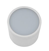 8 inch SAA C-tick 30W SMD5630 surface mounted led downlight housing