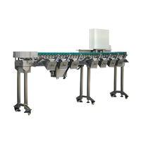 Automatic Food / Fruit Weight Grading Machine and Weight Sorting Machine