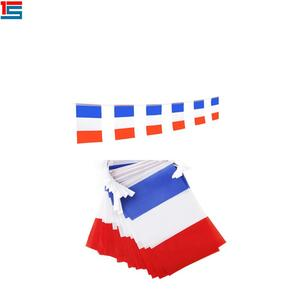 Best quality 14*21cm polyester france string flags Blue white red pennant flags