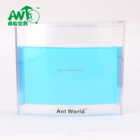 Wholesale DIY Educational Kids Toys DIY Ant World