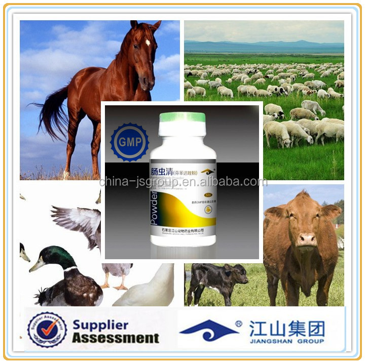 Treatment of intestinal diseases Chickens, ducks goose pig sheep birds animal medicine