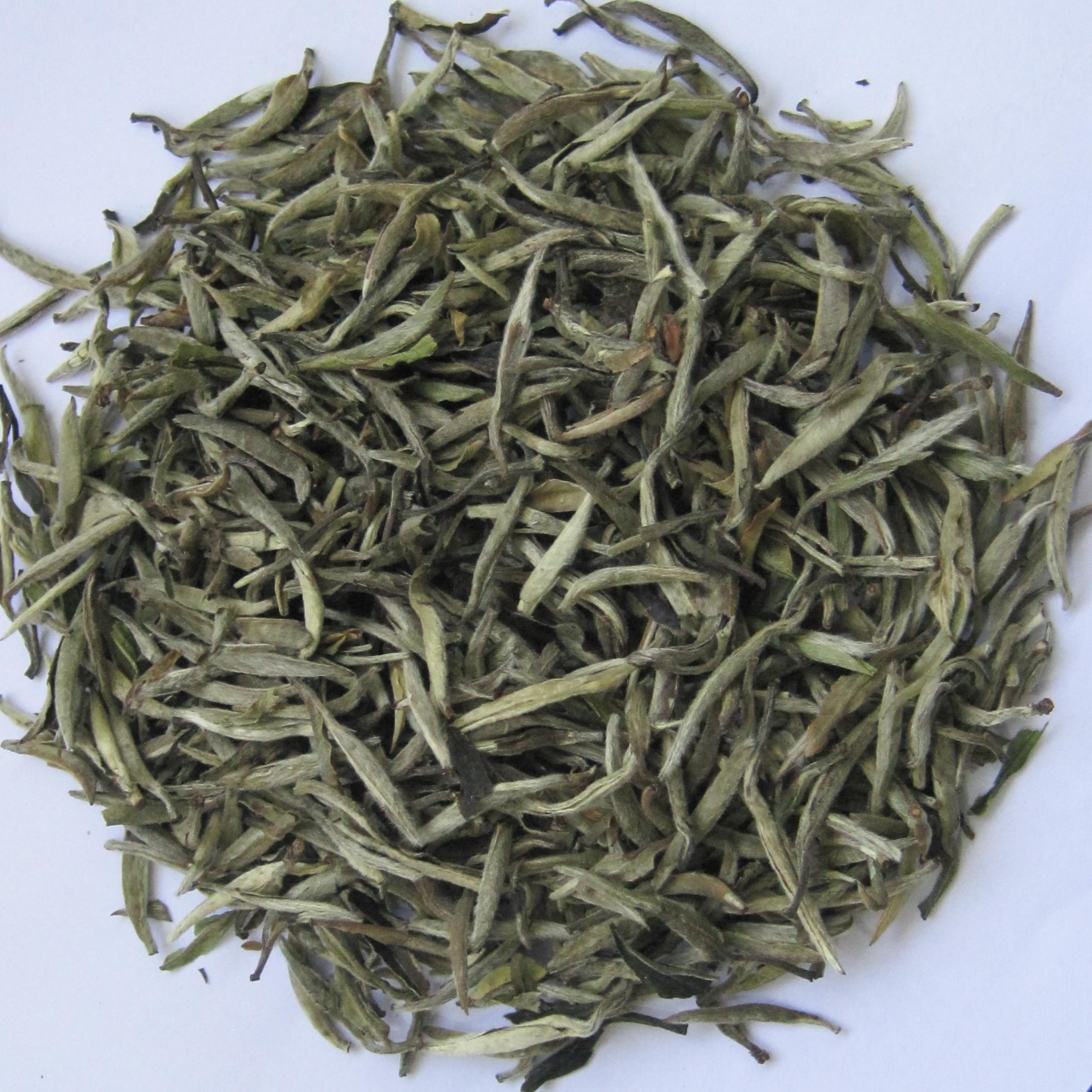 Chinese White tea price fujian Shoumei tea Chian top grade White Tea Silver Needle C - 4uTea   4uTea.com