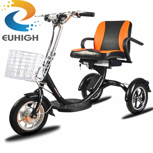 Adult Electric Trike And Tricycle E-bicycle with 48V 300 Watt