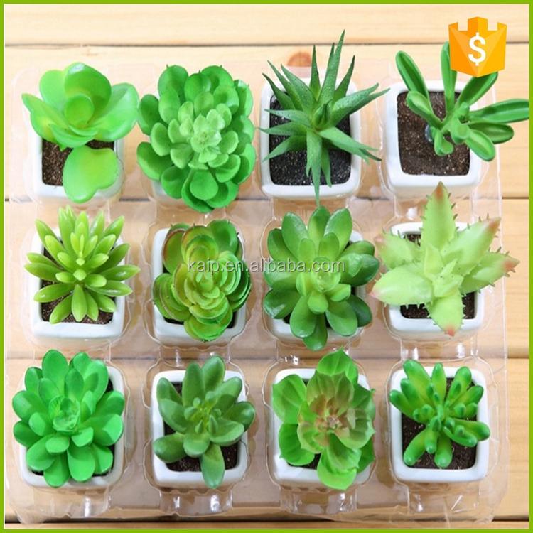 Pas cher artificielle plantes faire plantes artificielles for Plantes artificielles pas cher