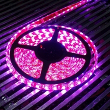 Kecerahan Tinggi <span class=keywords><strong>12</strong></span> <span class=keywords><strong>V</strong></span> RGB LED Strip Lampu RGB 5050 RGB Profil Aluminium LED Strip Lampu, lampu Strip LED 5050