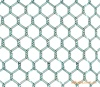 /product-detail/factory-directly-anping-pvc-coated-hexagonal-wire-mesh-for-sale-62031377160.html