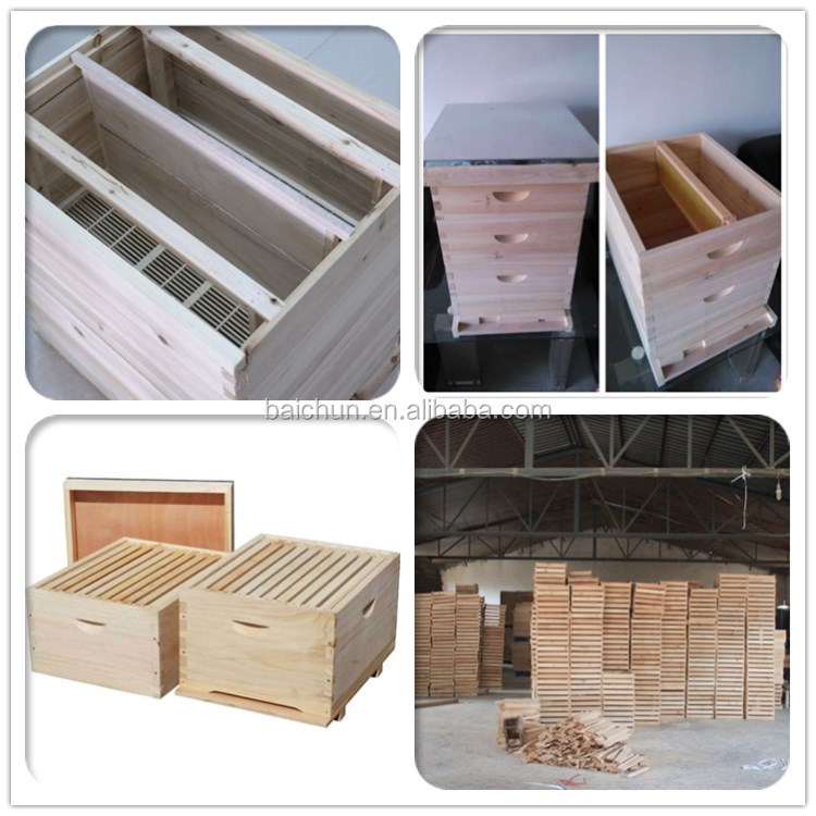 Includes all Frames /& Foundations Langstroth Bee Hive 10 Frame 1 Deep Box Hive