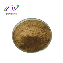 Echinacea Herb extract, Polyphenol 4%