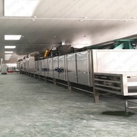 DW series hot air contimuous conveyor mesh belt dryer